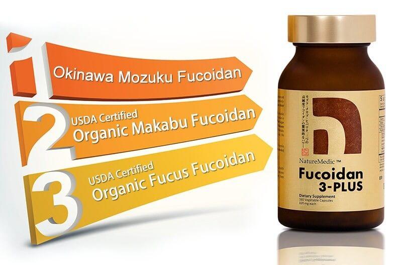 Thành phần Fucoidan 3 plus dạng viên có 3 loại tảo nâu chứng nhận hữu cơ kết hợp với nấm agaricus