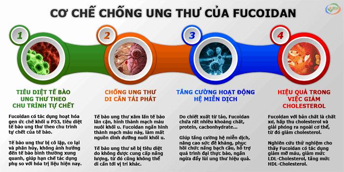 fucoidan-chong-lai-te-bao-ung-thu-hieu-qua