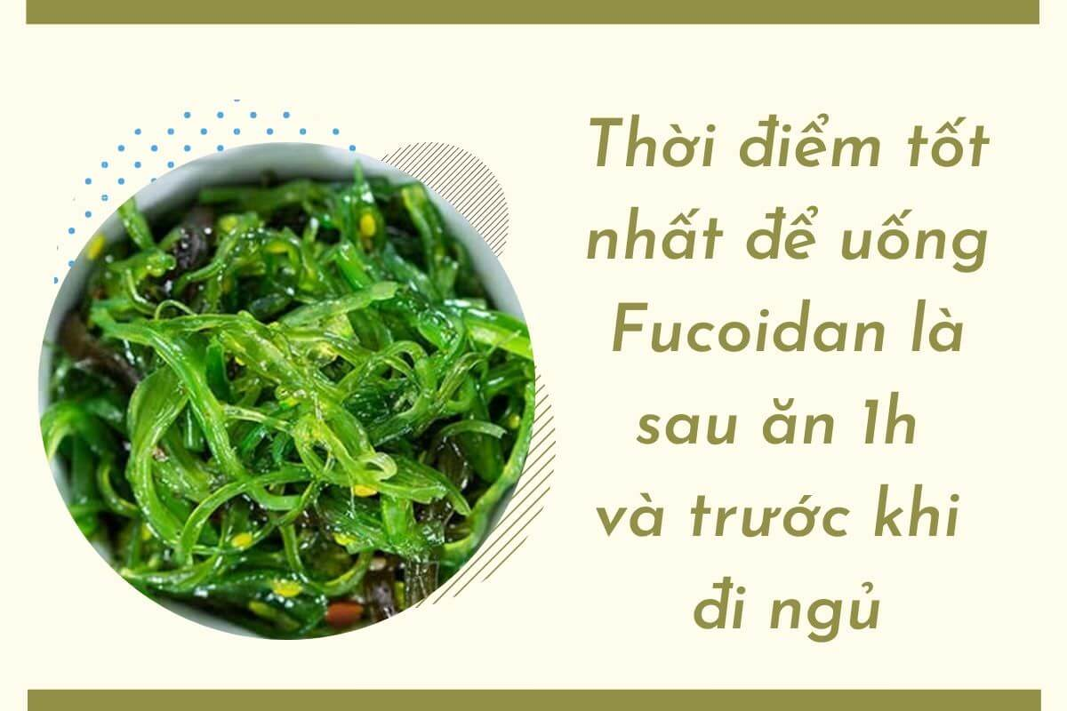 Uống Fucoidan vào thời điểm nào là tốt nhất?
