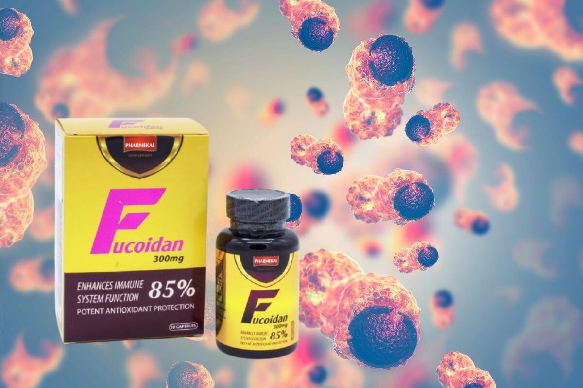 Fucoidan Pharmekal có tốt không?