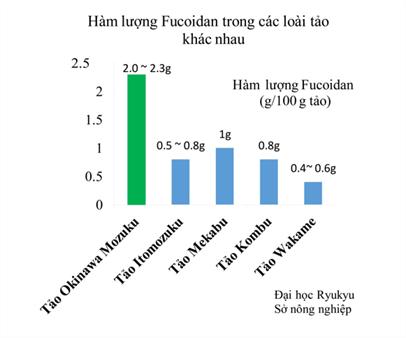 Hàm lượng Fucoidan trong tảo nâu Mozuku là cao nhất