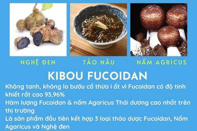 Kibou Fucoidan