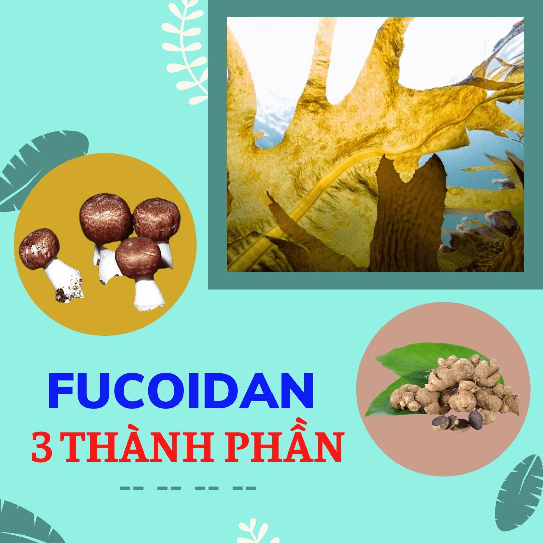 Fucoidan 3 thành phần