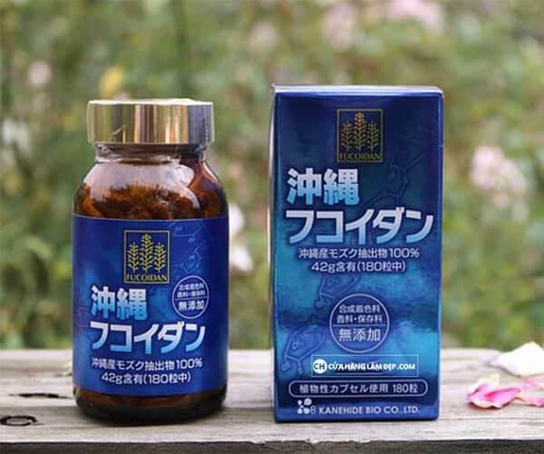 Fucoidan xanh phù hợp để phòng ngừa và chống tái phát ung thư