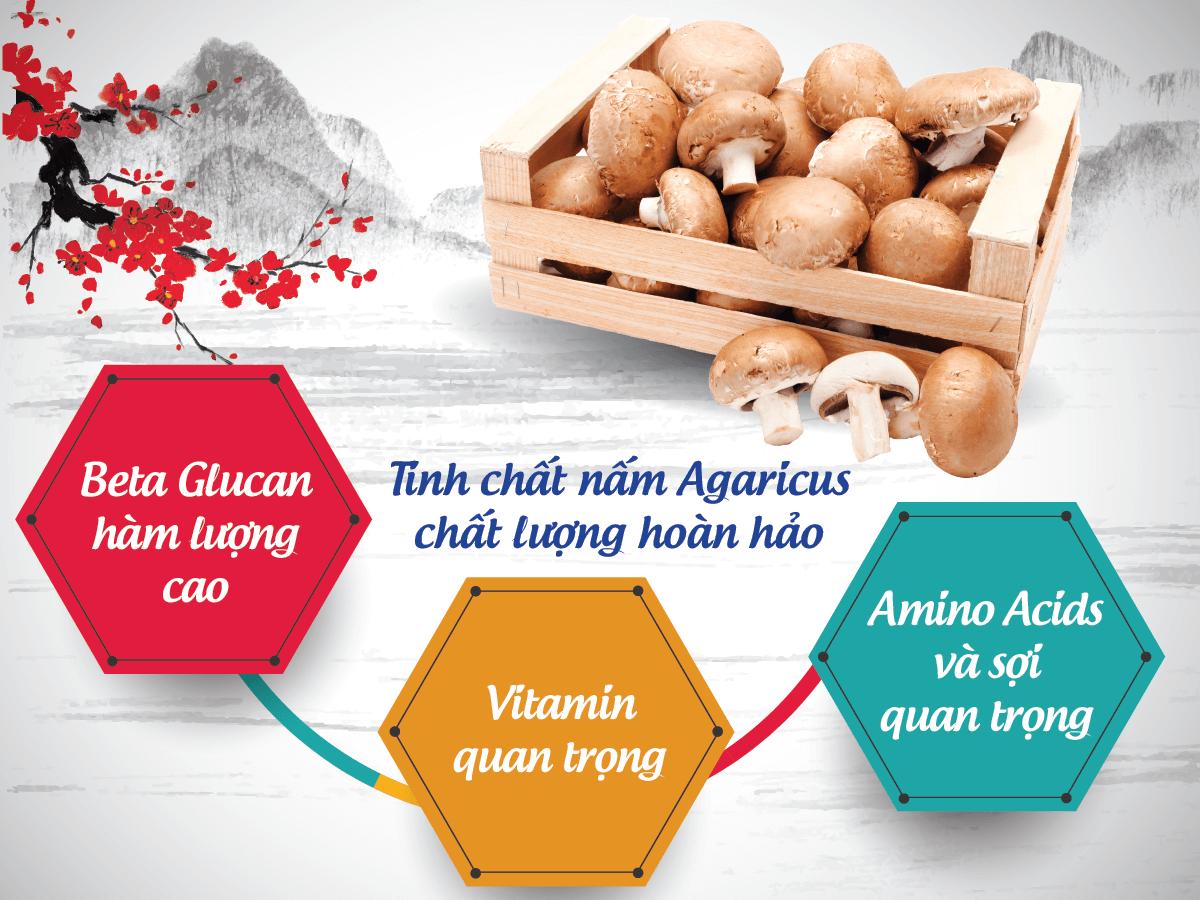 Nấm Agaricus giúp hỗ trợ giảm tác dụng phụ trong hóa xạ trị