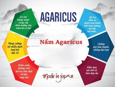 Tác dụng của nấm Agaricus