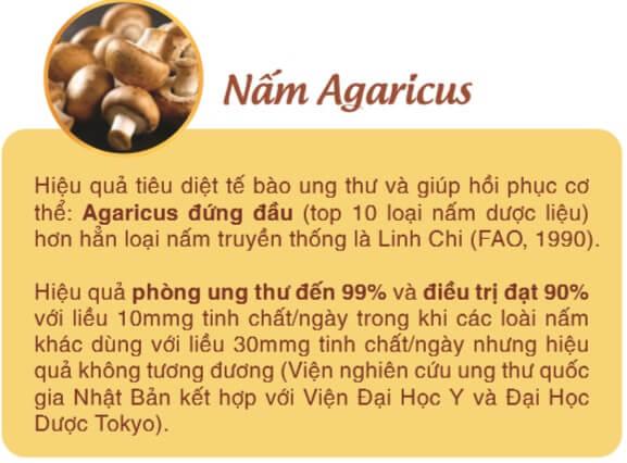 Nấm Agaricus có tác dụng gì với bệnh nhân K?