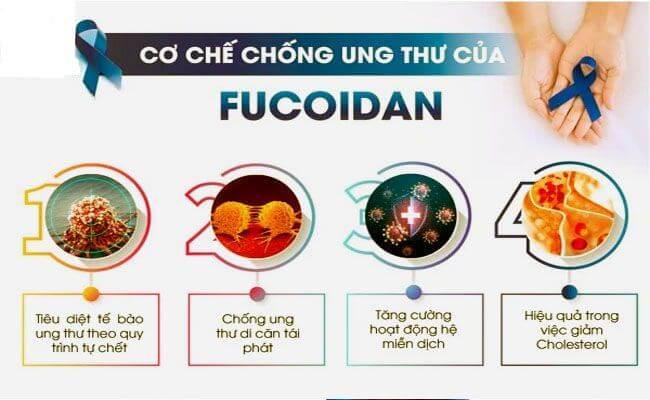 Tác dụng của Fucoidan